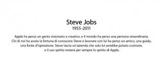 steve2