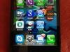 puro-clear-fronte-retro-iphone-5-pic-12